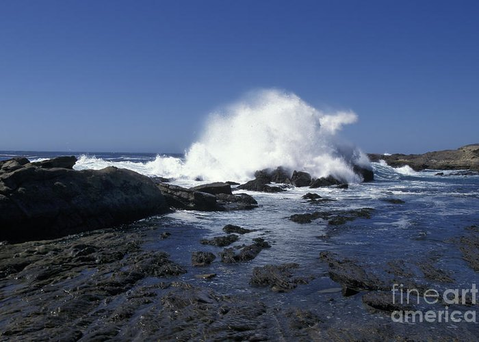 California Greeting Card featuring the photograph Point Lobos Seascape 2 by Stan and Anne Foster