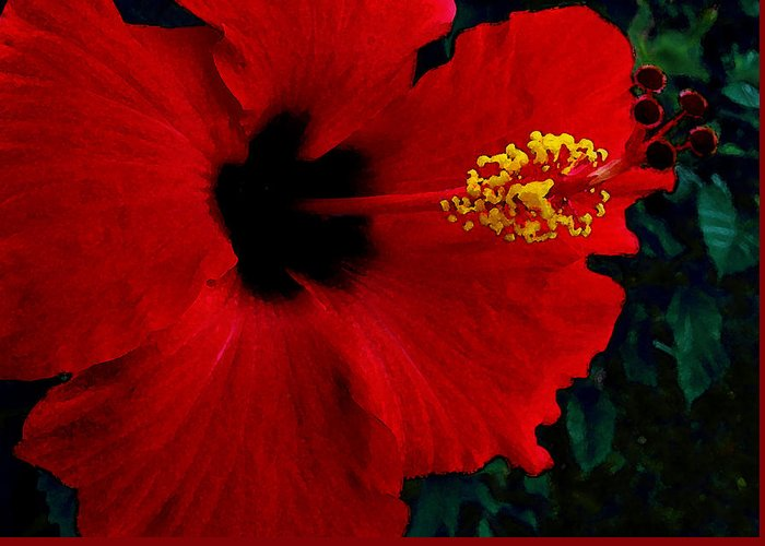 Red Hibiscus Greeting Card featuring the photograph Poison Passion and Seduction by James Temple
