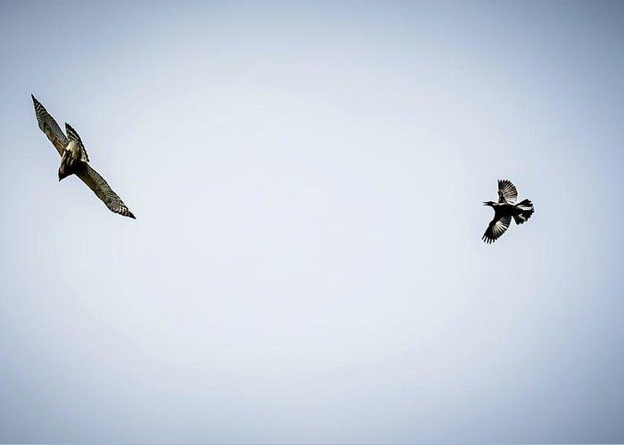 Hawk Greeting Card featuring the digital art Police Bird Chasing Away Predator by Ed Stines