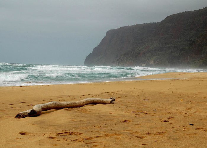 Beach Greeting Card featuring the photograph Polihale State Park by Kathy Schumann