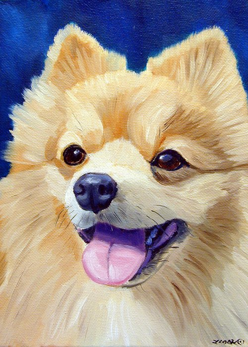 Pomeranian Greeting Cards