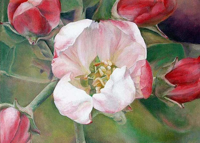 Floral Painting Greeting Card featuring the painting Pommier by Muriel Dolemieux