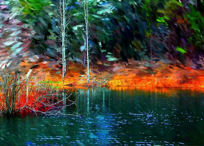 Digital Photograph Greeting Card featuring the photograph Pond In The Woods by David Lane