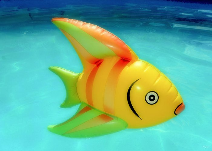 Fish Greeting Card featuring the photograph Pool Toy by Tony Grider