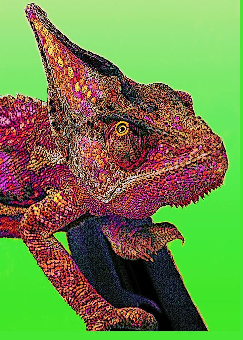 Veiled Chameleon Greeting Card featuring the digital art Pop Art Chameleon by L S Keely