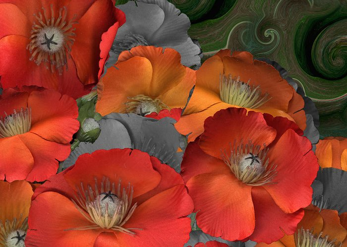 Poppy Greeting Card featuring the photograph Poppy by Stan Bowman