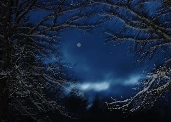 Twilight Sky Frosted Trees Moonlight Blue Sky Orb Spiritual Snow Trees Night Sky Greeting Card featuring the photograph Porthole To The Heavens by Nancy Rohrig