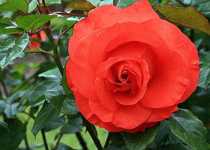 Portland Rose Garden Greeting Card featuring the photograph Portland Rose Garden by Margaret Hood