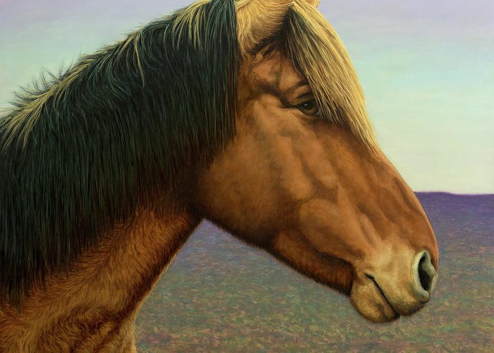 Stallion Greeting Cards
