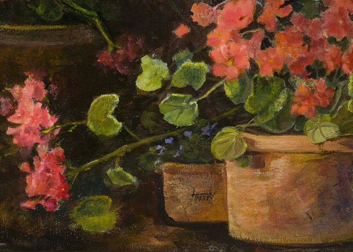 Flowers Greeting Card featuring the painting Pots Of Geraniums by Jimmie Trotter