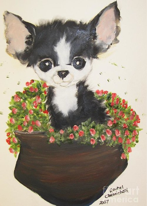 Chihuahua Greeting Card featuring the painting Potted Pup by Rachel Carmichael