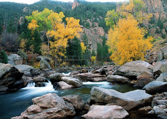 Colorado Greeting Card featuring the photograph Poudre Gold by Jim Benest