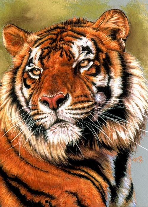 Tiger Greeting Card featuring the pastel Power and Grace by Barbara Keith