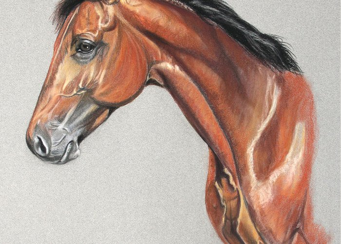 Horse Greeting Card featuring the drawing Power Pack by Deb LaFogg-Docherty