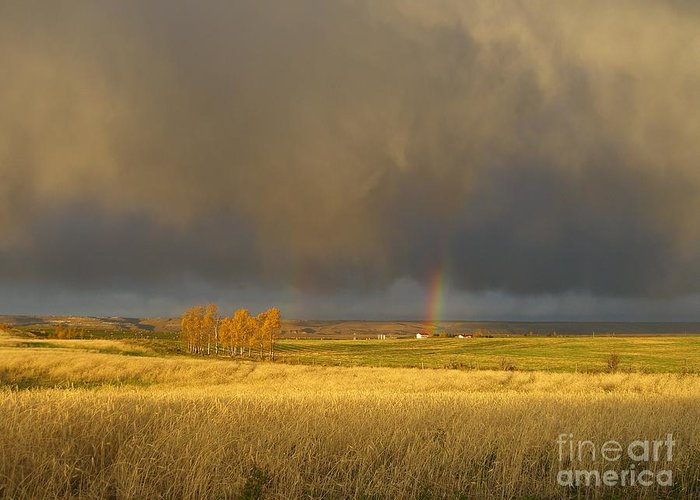 Alberta Greeting Card featuring the photograph Prairie Sky by Jim Thomson