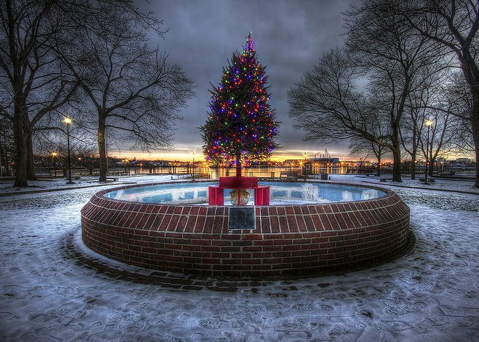 Prescott Greeting Card featuring the photograph Prescott Park Christmas Tree by Eric Gendron
