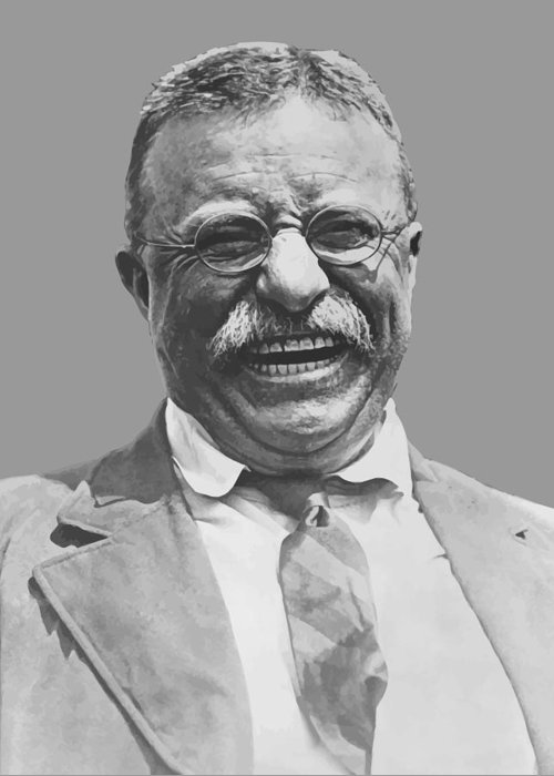 Teddy Roosevelt Greeting Cards
