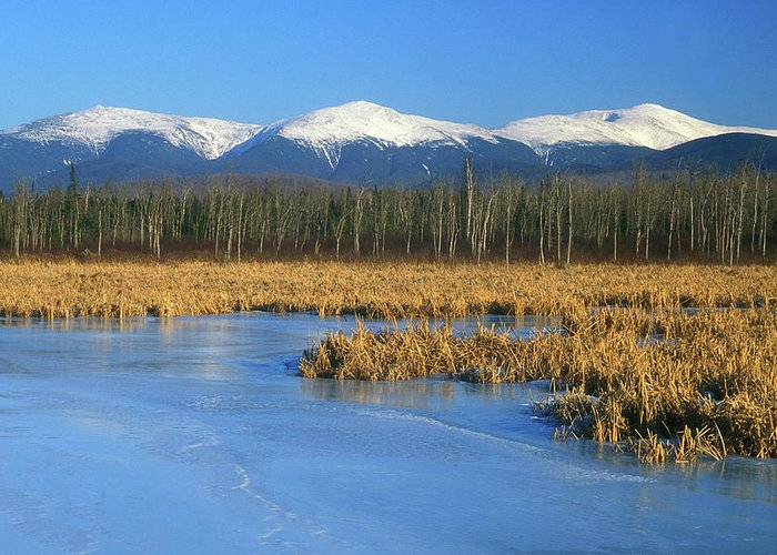 New Hampshire Greeting Card featuring the photograph Presidential Range From Pondicherry Refuge by John Burk