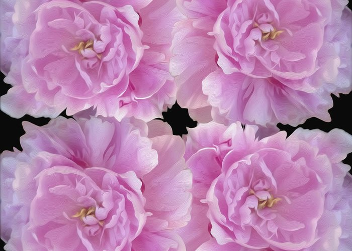 Pink Flower Greeting Card featuring the photograph Pretty In Pink by Linda Constant