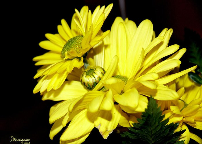 Flowers Greeting Card featuring the photograph Pretty Yellow Flowers by Ericamaxine Price
