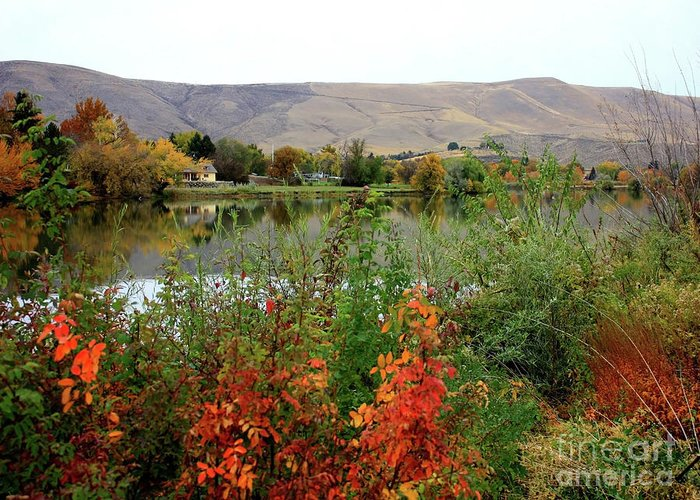 Prosser Greeting Card featuring the photograph Prosser Autumn River With Hills by Carol Groenen