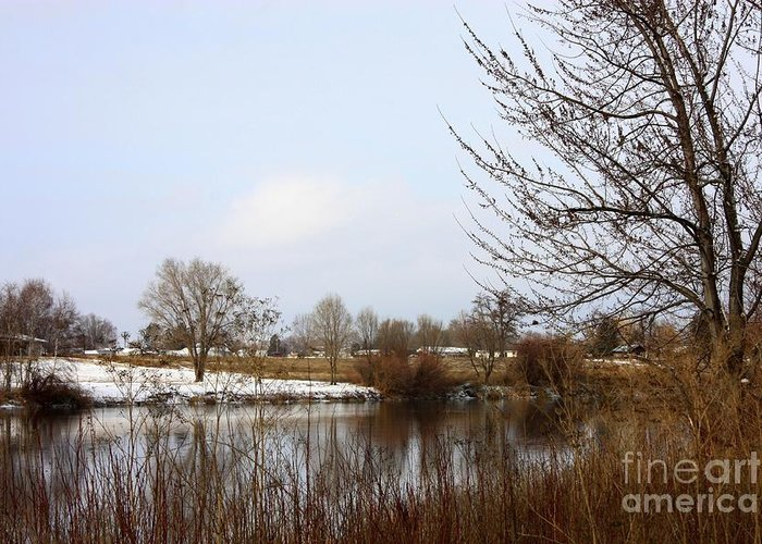 Winter Greeting Card featuring the photograph Prosser Winter - Brown And Burgundy by Carol Groenen