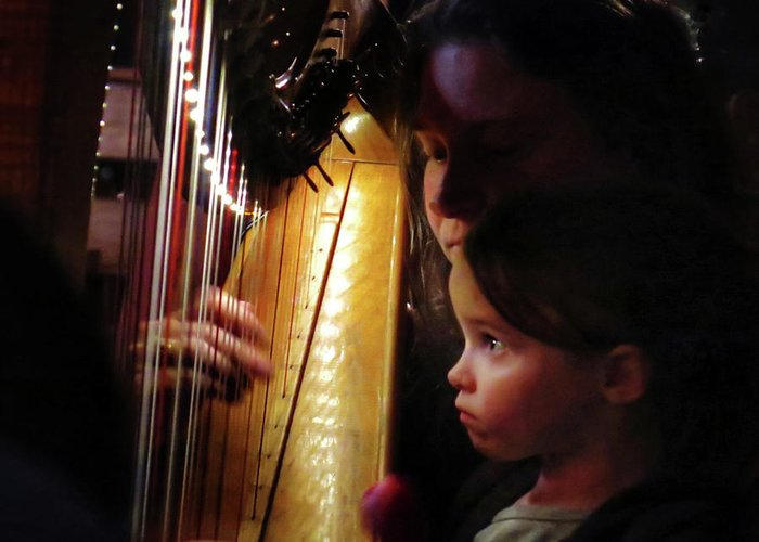 Irish Harp Kathleen Protege Greeting Card featuring the photograph Protege by Scott Waters