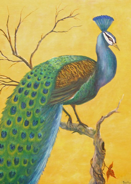 Peacock; Birds; Fall Leaves Greeting Card featuring the painting Proud As A Peacock by Ben Kiger