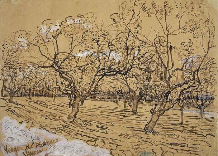 Nature Greeting Card featuring the painting Provencal Orchard Arles March - April 1888 Vincent Van Gogh 1853 1890 by Artistic Panda