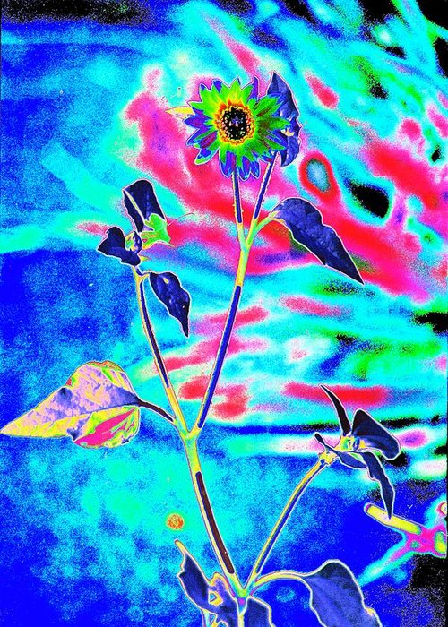 Psychedelicized Daisy Greeting Card featuring the photograph Psycho Daisy by Richard Henne