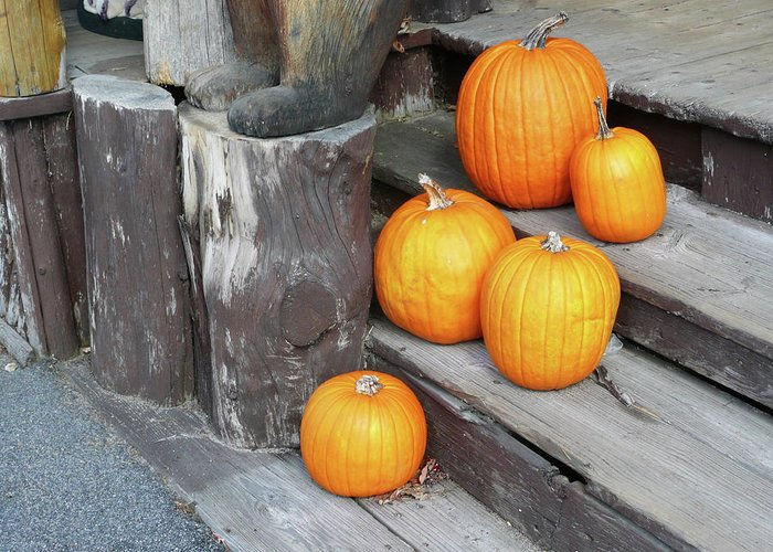 Tranquility Greeting Card featuring the photograph Pumpkin Autumn In Adirondacks by Kate Leikin