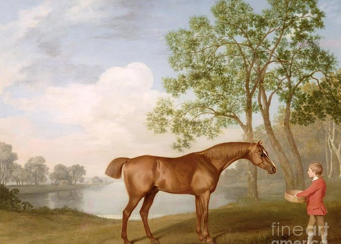 Pumpkin Greeting Card featuring the painting Pumpkin With A Stable-lad by George Stubbs