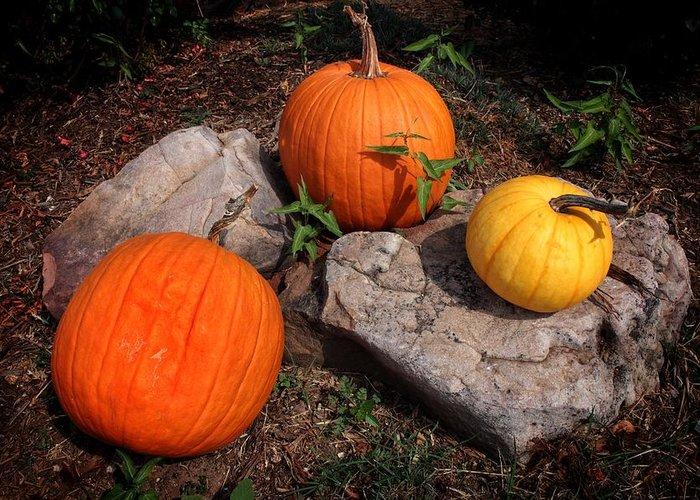 Pumpkins Greeting Card featuring the photograph Pumpkins For October by Buck Buchanan