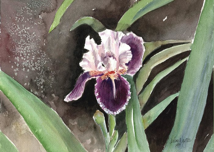 Flower Greeting Card featuring the painting Purple Iris by Arline Wagner