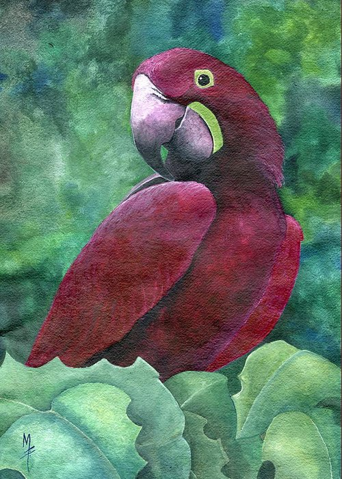 purple macaw greeting card for sale by marsha friedman