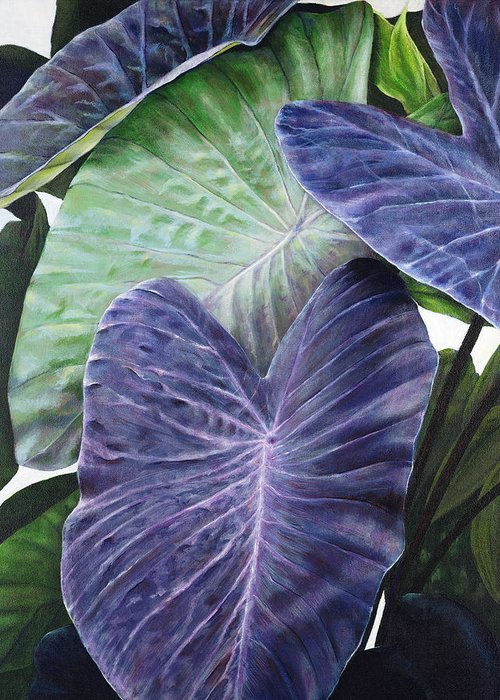 Acrylic Greeting Card featuring the painting Purple Taro by Sandra Blazel - Printscapes