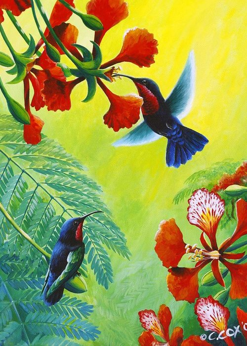 Chris Cox Greeting Card featuring the painting Purple-throated Caribs And Flamboyant by Christopher Cox