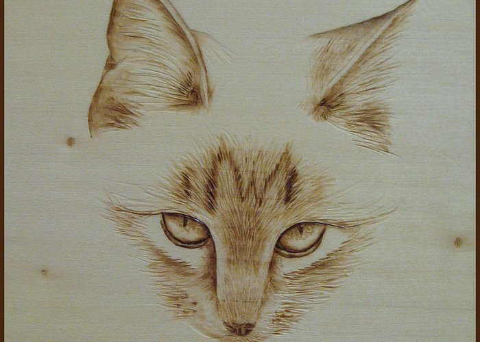 Kitty Greeting Card featuring the pyrography Purrfect Study by Jo Schwartz