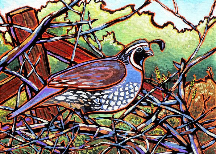 Quail Greeting Card featuring the painting Quail by Nadi Spencer