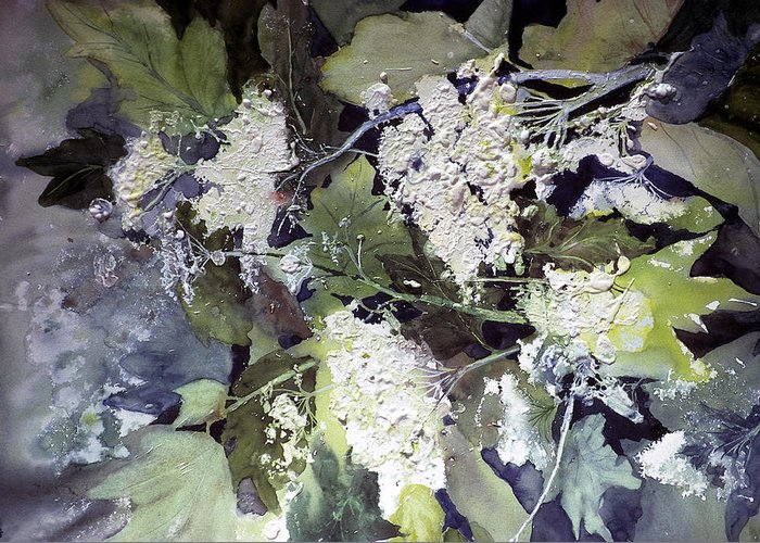 Queen Annes Lace Greeting Card featuring the painting Queen Anne's Lace by Connie Williams