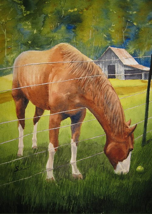 Horse Greeting Card featuring the painting Quiet Comfort by Shirley Braithwaite Hunt
