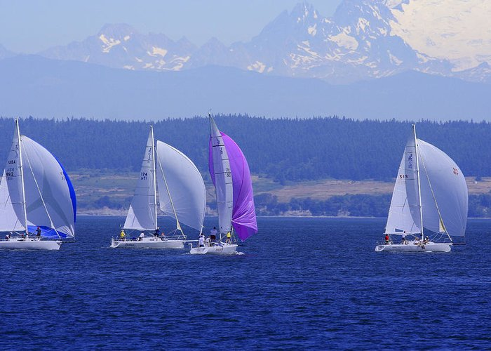 Sailboats Greeting Card featuring the photograph Race Week 2006 Bo1091 by Mary Gaines