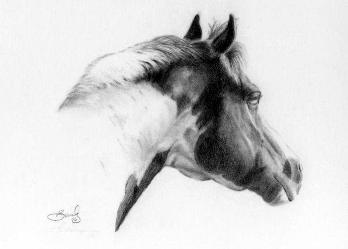 Pencil Drawing Greeting Card featuring the drawing Racer by Beverly Johnson