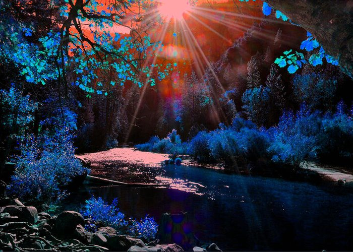 Landscape Greeting Card featuring the photograph Radiant Energy by Vijay Sharon Govender