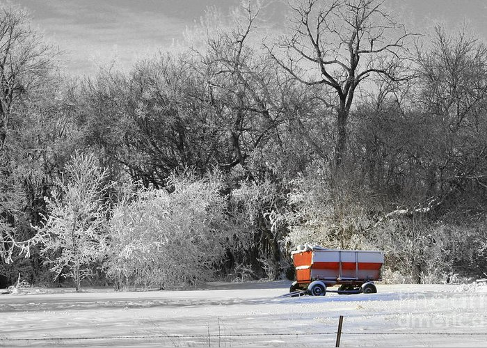 Snow Greeting Card featuring the photograph Radio Flyer by Julie Lueders