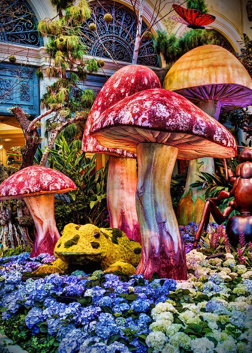 Mushroom Greeting Card featuring the photograph Radioactive Mushrooms by Ricky Barnard