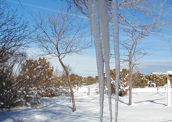 Icicle Greeting Card featuring the photograph Rain Barrel Icicle by Diana Dearen