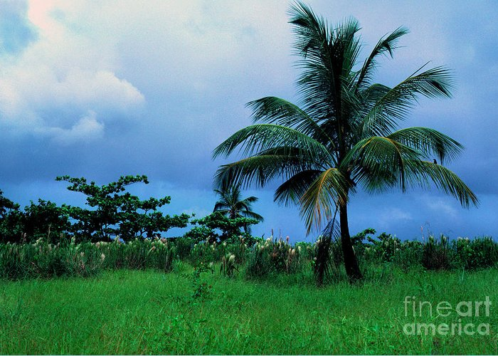 Rain Clouds Greeting Card featuring the photograph Rain Cloudsover Dominica by Thomas R Fletcher