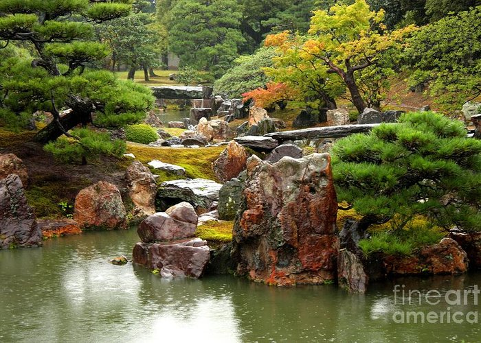 Japan Greeting Card featuring the photograph Rain On Kyoto Garden by Carol Groenen