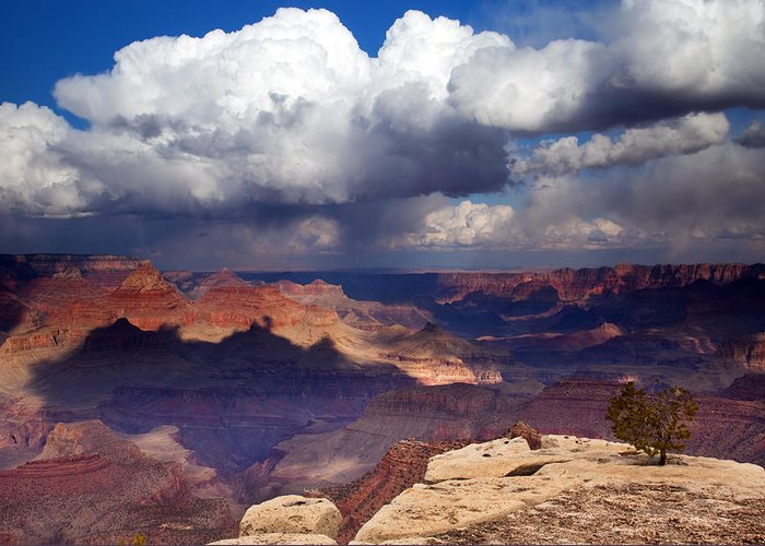 Grand Canyon Greeting Card featuring the photograph Rain Over The Grand Canyon by Mike Dawson